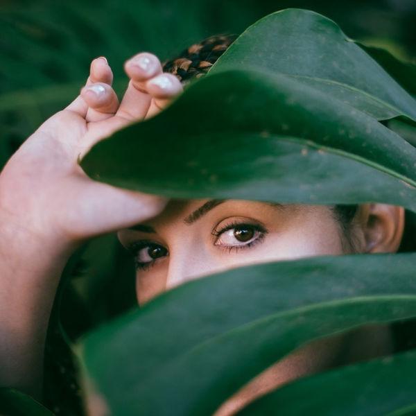 Selva - Minha Selva