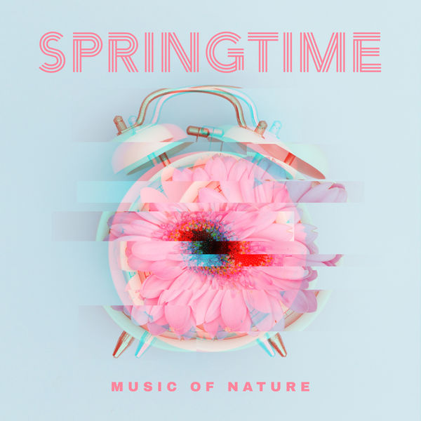 Nature Sounds Relaxation: Music for Sleep, Meditation, Massage Therapy, Spa - Springtime Music of Nature: Music for Sleep, Meditation, Massage Therapy, Spa