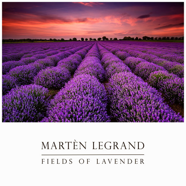 Martèn LeGrand - Fields Of Lavender