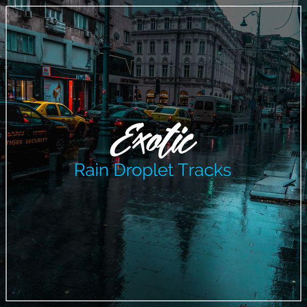 10 Exotic Rain Droplet Tracks | Lullaby Rain, Rain Sound Plus