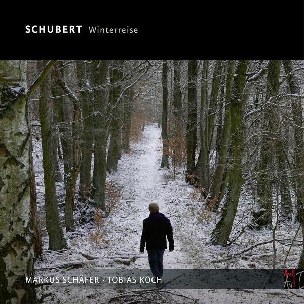 Markus Schäfer - Schubert, Die Winterreise