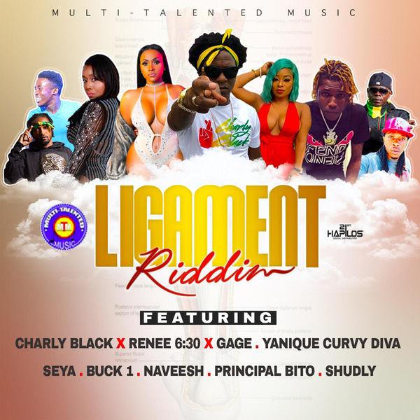 Various Artists Ligament Riddim