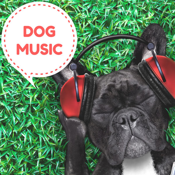 Dog Music - Dog Music – Relaxing Piano Pet Therapy with Soothing Nature Sounds Music