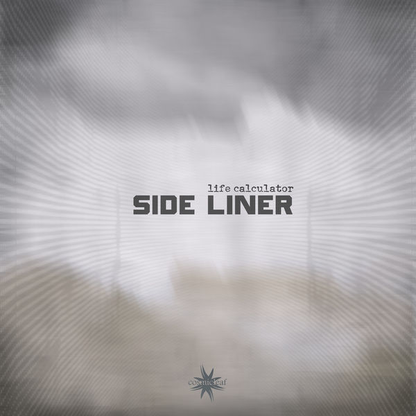Side Liner - Life Calculator