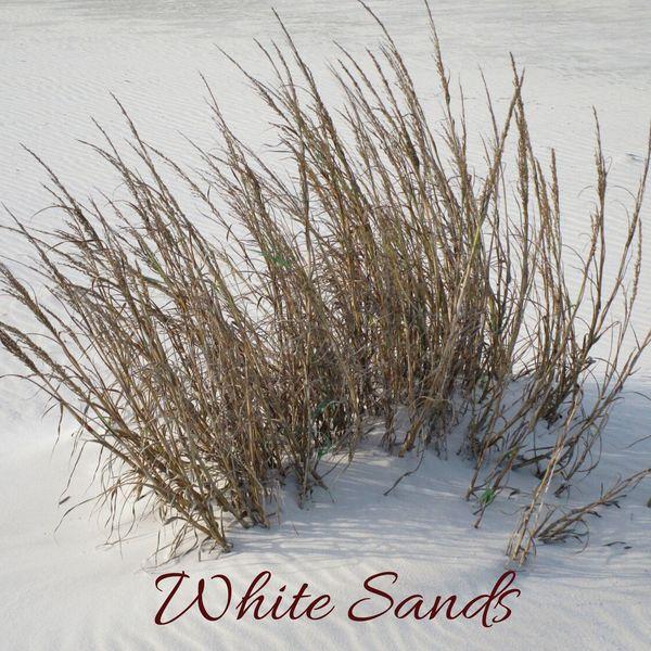 Guevara Goo - White Sands