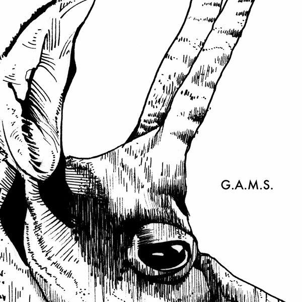 G.A.M.S. - G.A.M.S.
