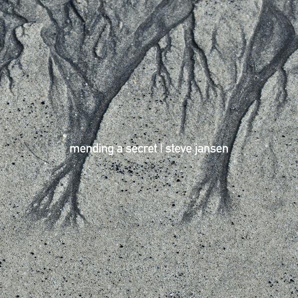 Steve Jansen - Mending a Secret