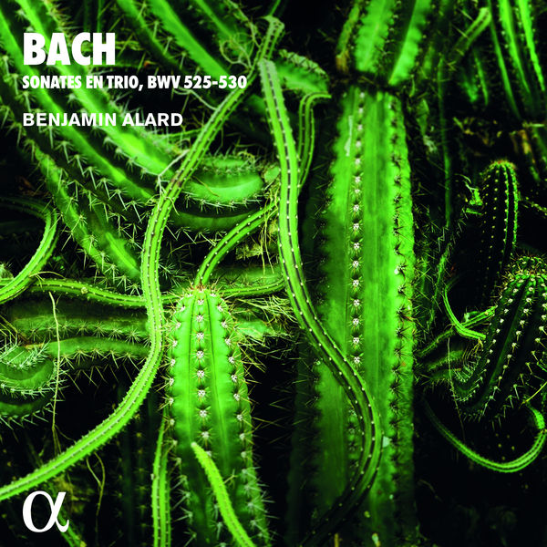 Benjamin Alard|Bach: Sonates en trio, BWV 525-530 (Alpha Collection)