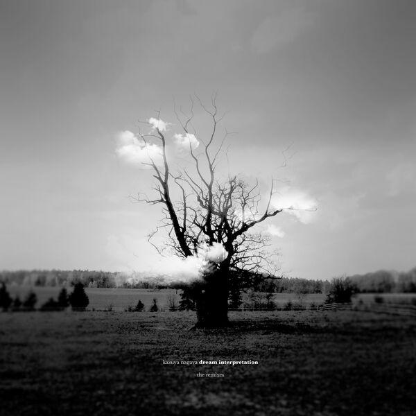 Kazuya Nagaya Dream Interpretation (The Remixes)