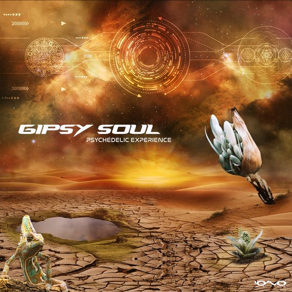 Gipsy Soul - Psychedelic Experience
