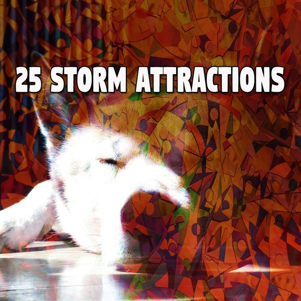 Rain for Deep Sleep - 25 Storm Attractions