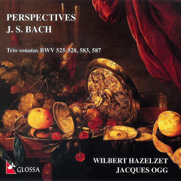 Wilbert Hazelzet - Perspectives