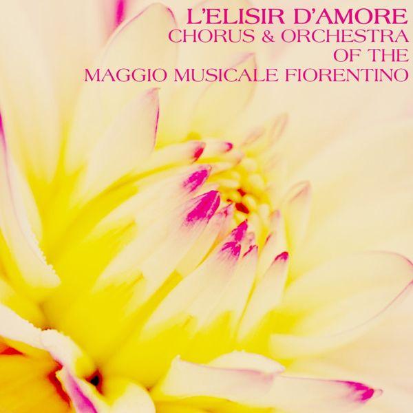 Chorus of the Maggio Musicale Fiorentino - L'Elisir D'Amore