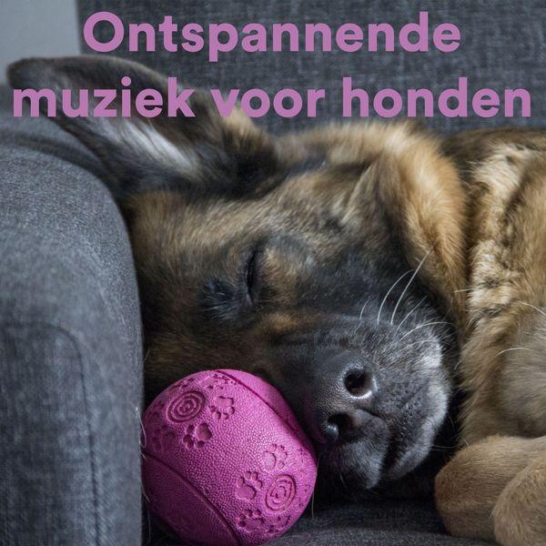 Various Artists - Ontspannende Muziek Voor Honden