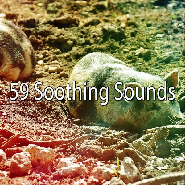 Deep Sleep Relaxation - 59 Soothing Sounds