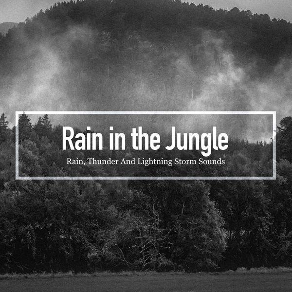 Album Rain in the Jungle, Rain, Thunder And Lightning Storm