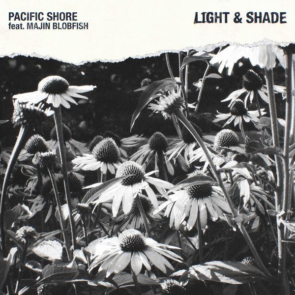 Pacific Shore - Light & Shade