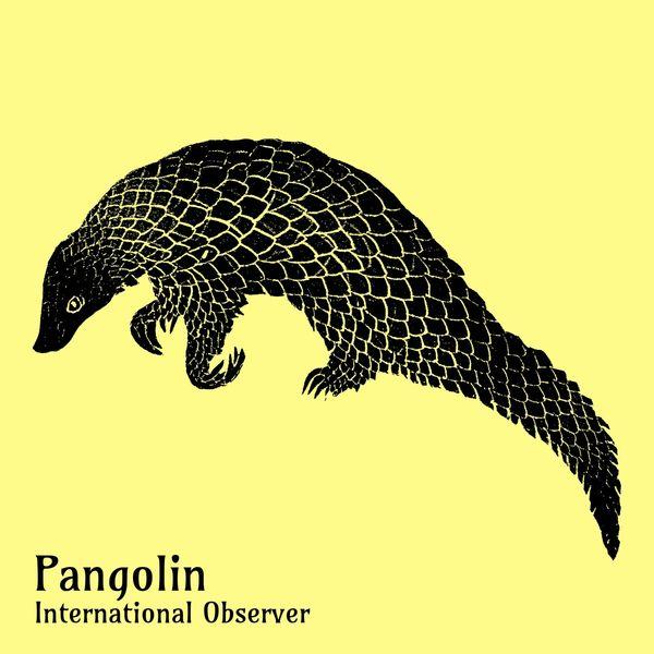International Observer - Pangolin
