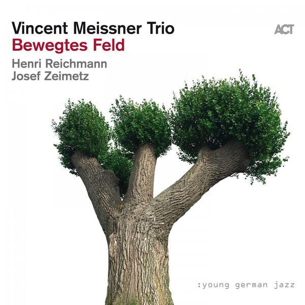 Vincent Meißner - Bewegtes Feld