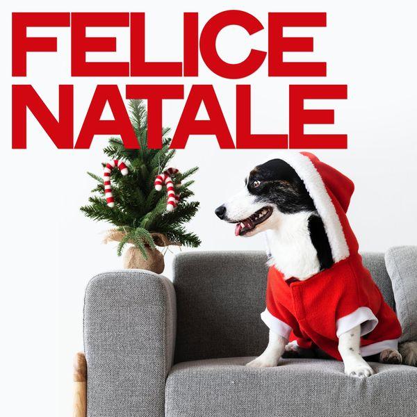 Various Artists - Felice natale