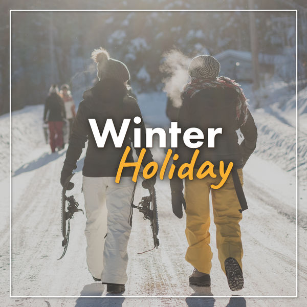 Various Artists - Winter Holiday