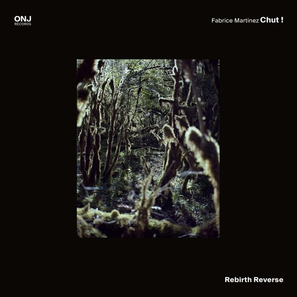 Fabrice Martinez Chut ! - Rebirth Reverse
