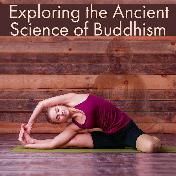 Buddha Lounge - Exploring the Ancient Science of Buddhism - Perfect Yogi, Best Medicine, Yoga brings Relief, Meditation Helps to Overcome Stress, Focus on Harmony in Life, Great Balance Body and Mind