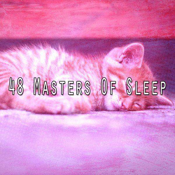 Relaxing With Sounds of Nature and Spa Music Natural White Noise Sound Therapy - 48 Masters of Sle - EP