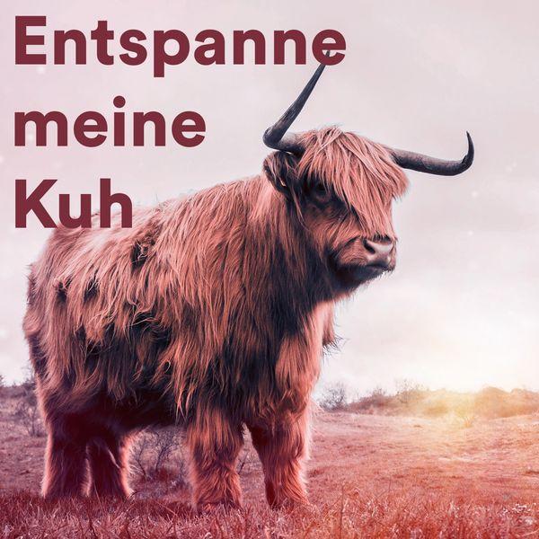 Various Artists - Entspanne Meine Kuh