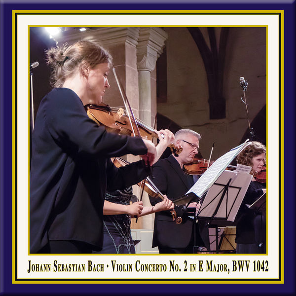 Julia Schröder - Bach: Violin Concerto in E Major, BWV 1042 (Live)