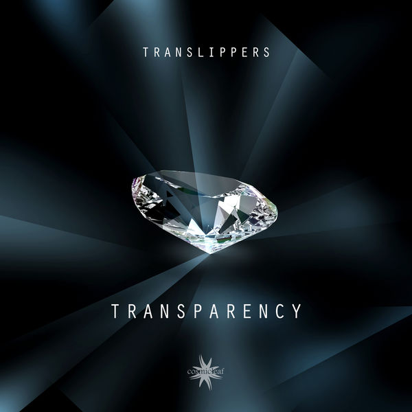 Translippers - Transparency