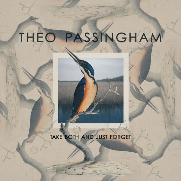 Theo Passingham - Take Both and Just Forget