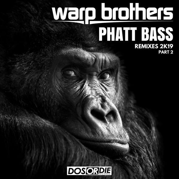 Warp Brothers - Phatt Bass Remixes, Pt. 2