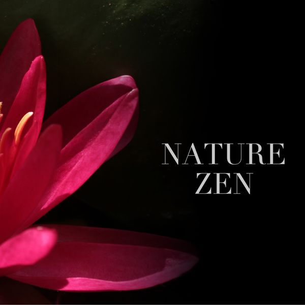 Nature Sounds - Nature Zen