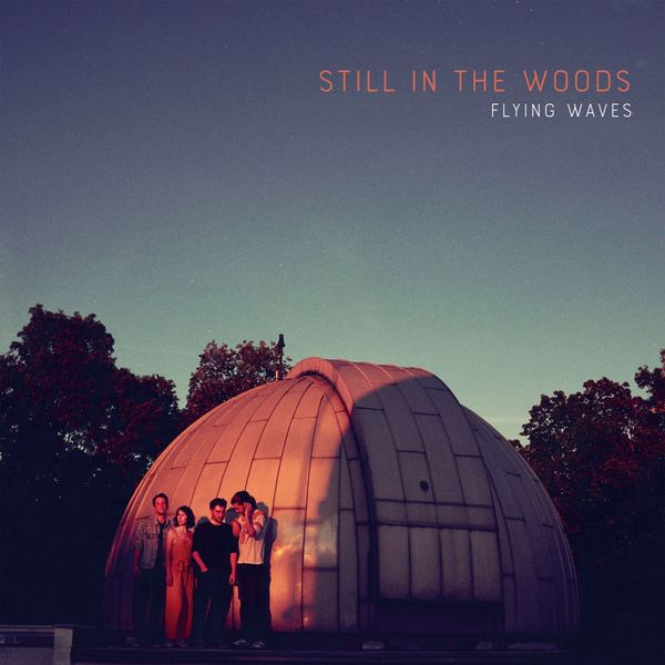 Still in the Woods - Flying Waves
