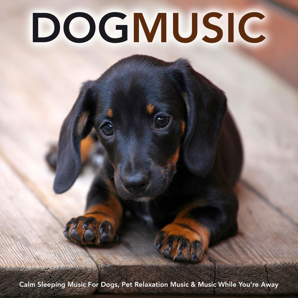 Dog Music - Dog Music: Calm Sleeping Music For Dogs, Pet Relaxation Music & Music While You're Away