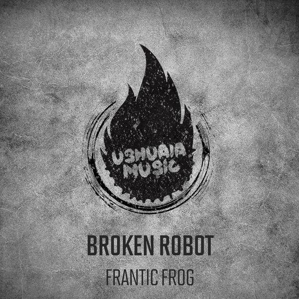 Broken Robot - Frantic Frog