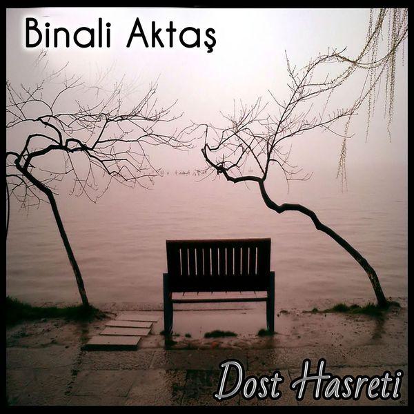 Binali Aktaş - Dost Hasreti