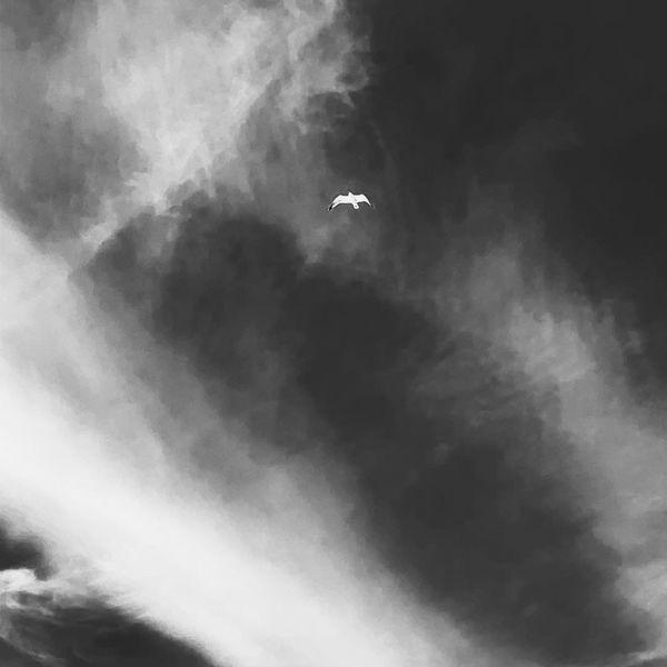 Mikael Sapin - My Love
