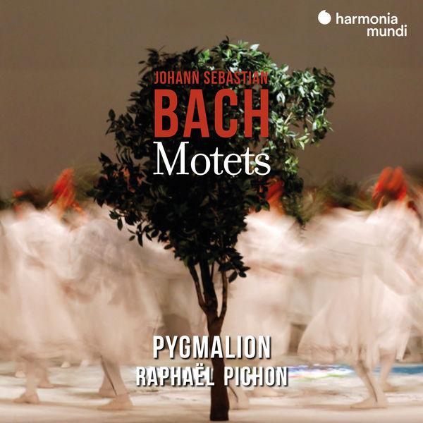Pygmalion - Johann Sebastian Bach: Motets