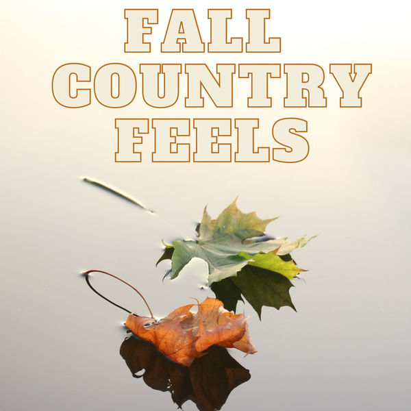 Various Artists - Fall Country Feels