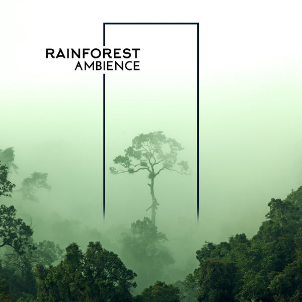 Relaxing With Sounds of Nature and Spa Music Natural White Noise Sound Therapy - Rainforest Ambience: Relaxing Music with Tropical Sounds of Nature