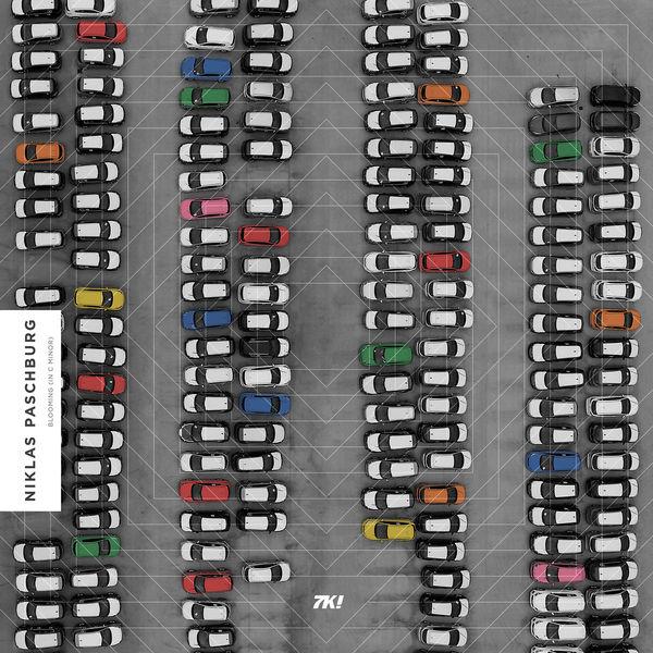 Niklas Paschburg - Blooming (In C Minor) [Extended Version]
