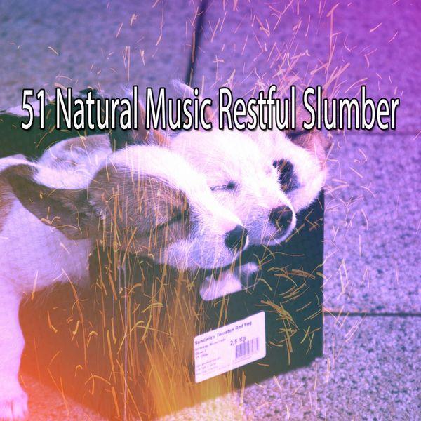 SPA - 51 Natural Music Restful Slumber