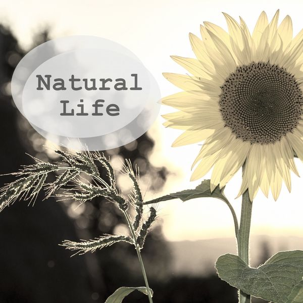 Nature Sounds - Natural Life