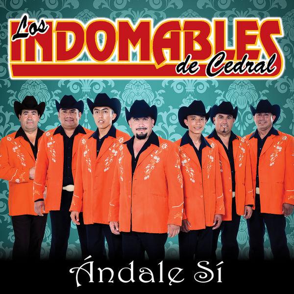 Los Indomables De Cedral - Ándale Sí