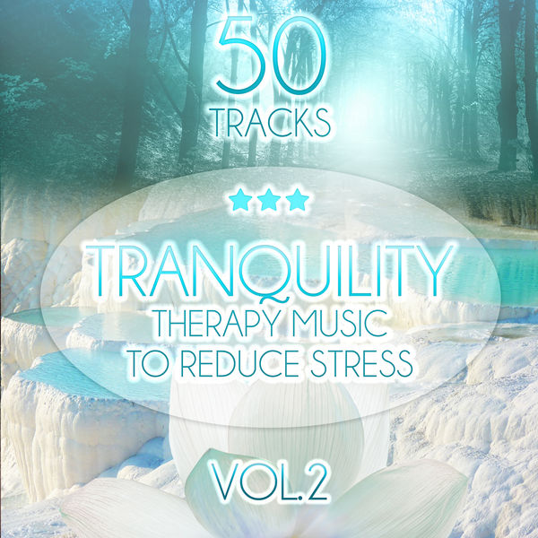 Tranquility Spa Universe - Tranquility: Therapy Music to Reduce Stress, Relaxing Sounds of Nature (Birds, Water, Sound of the Sea) Trouble Sleeping, Meditation, Yoga, Help with Learning, Spa & Massage vol. 2