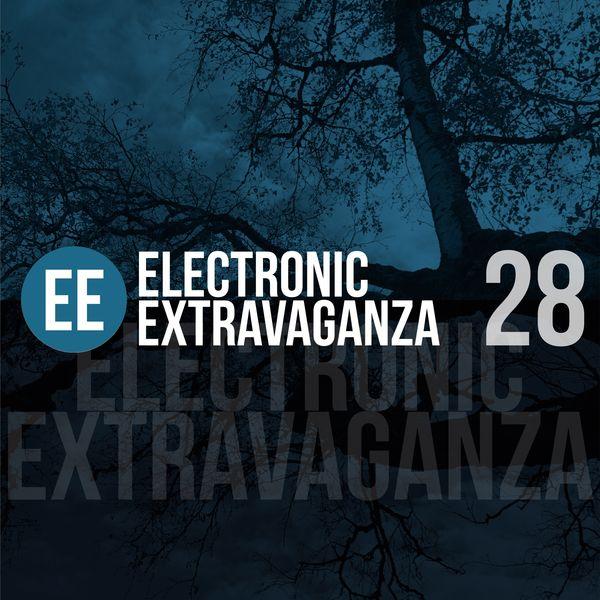 Various Artists - Electronic Extravaganza, Vol. 28