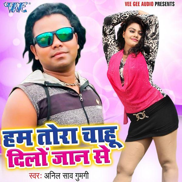 Anil Saw Gumgi - Hum Tora Chahu Dilo Jaan Se