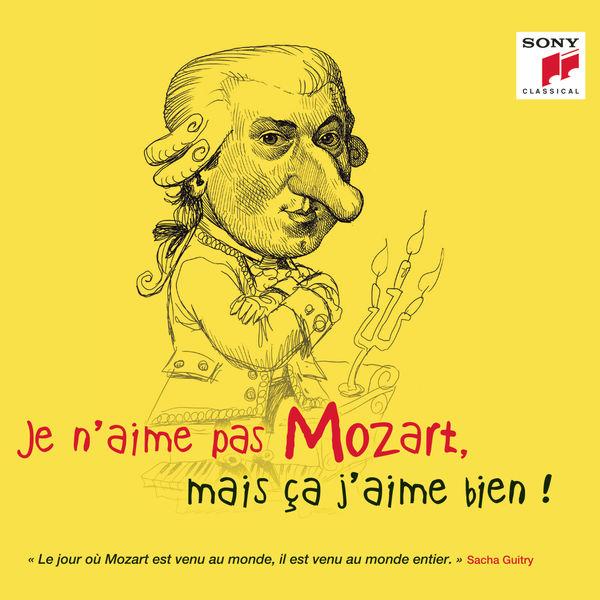 Various Artists - Je n'aime pas Mozart, mais ça j'aime bien !